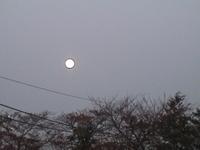 Kaguya_2