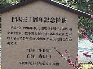 Kokuritsu_ume