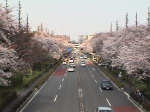 Daigaku_26