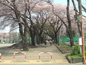 Toshokan