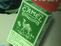 Camel_2