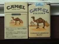 Camel_4