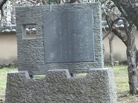 fujiminoana